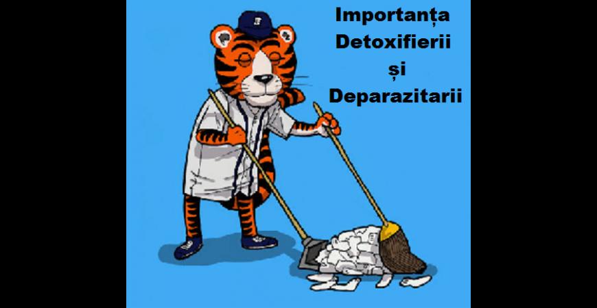 Detoxifierii si Deparazitarii periodice a organismului
